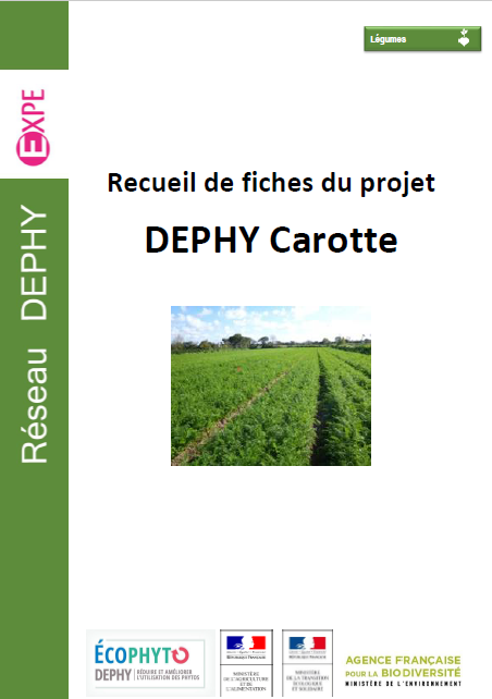 DEPHY Carotte Compile