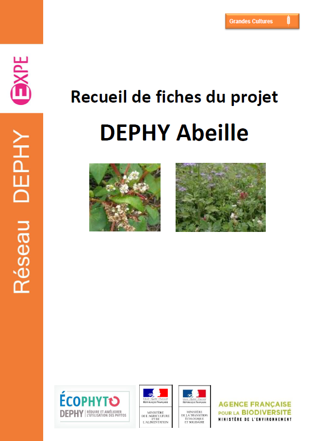 DEPHY Abeille compile