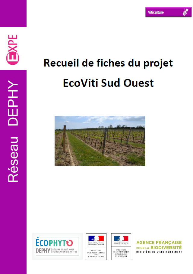 Ecoviti Sud Ouest compile