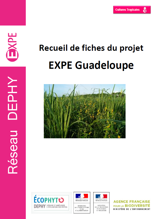 EXPE Guadeloupe compile