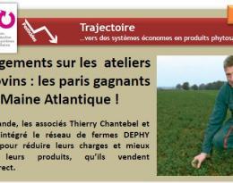 Reduire La Dose De Produits Phytopharmaceutiques Au Moyen De Panneaux Recuperateurs De Bouillie En Viticulture Ecophytopic