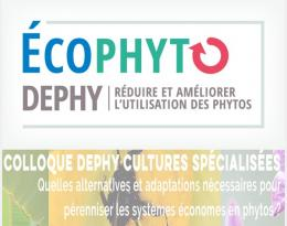 colloque dephy spé