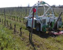 robot de binage Ted Naïo Technologies en action sur le site de Gaillac